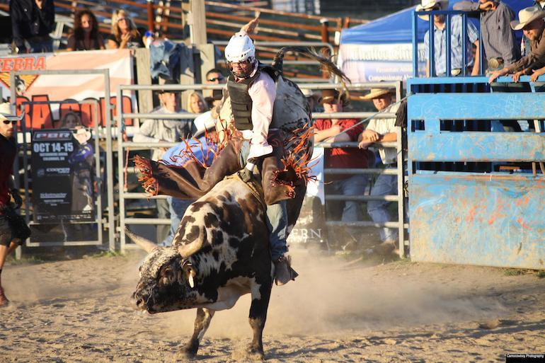 Ohio-Pro-Bull-Riding