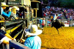 bull-riding-3