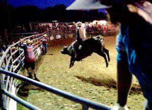 bull-riding-4