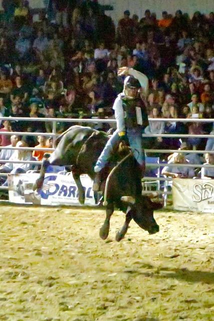 bull-riding-5